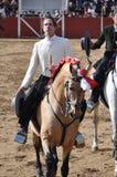 Лошадь бой Bull стоковое фото