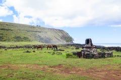 Лошадь в острове пасхи, Чили Стоковое фото RF