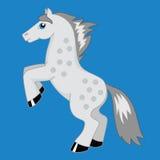 Лошадь в серых яблоках Стоковые Фото