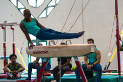 Лошадь гимнастов мужская состязаясь Стоковое фото RF
