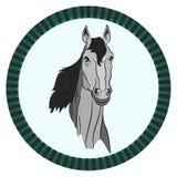 Лошадь значка Стоковое фото RF