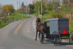 Лошадь и багги Амишей на дороге Стоковые Фото