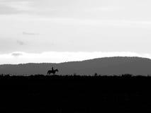 Лошадь и всадник Стоковое фото RF