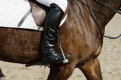 Лошадь и всадник Dressage Стоковое Изображение RF