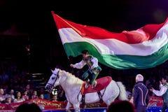 Лошадь и развевая флаг Стоковое фото RF