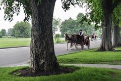 Лошадь и экипаж Квебек Стоковые Фото