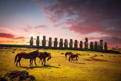 Лошадь на острове пасхи Стоковое Фото
