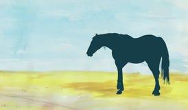 Лошадь на поле Стоковые Изображения