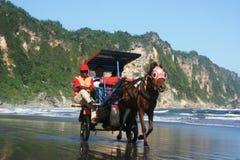 Лошадь на пляже Стоковое Изображение