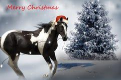 Лошадь рождества Стоковые Изображения