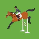 Лошадь скача над загородкой, конноспортивным спортом Стоковая Фотография RF