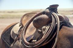 Лошадь с седловиной 01 Стоковая Фотография RF