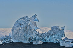 Лошадь льда Стоковые Изображения