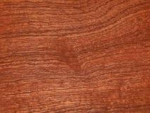 Лощите естественное mahogany makore Материал для интерьера и мебели стоковое изображение