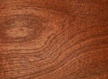 Лощите естественное mahogany makore Материал для интерьера и мебели стоковые изображения rf
