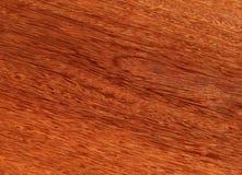 Лощите естественное mahogany Sukupira Материал для интерьера и мебели стоковая фотография rf
