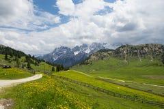 Луга горы в итальянских доломитах Стоковые Изображения RF