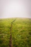 Луга 2 горы Стоковая Фотография RF