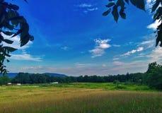 Луга и горы завальцовки Стоковая Фотография RF