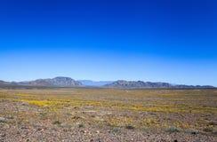 Луга национальная охраняемая природная территория золы, Калифорния Стоковые Изображения