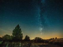 Луга под ярким голубым звёздным небом Стоковое Изображение