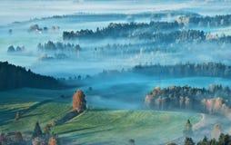 Луга Jetrichovice Стоковые Фото
