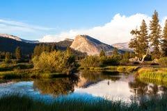 Луга Tuolumne, национальный парк Yosemite, Калифорния Стоковое Изображение