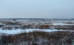 Луг, белый снег, сухая вегетация, деревья без листвы стоковая фотография rf