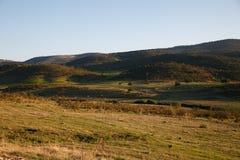 Луг весной с горами Стоковые Фотографии RF