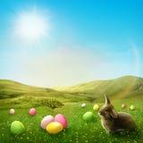Луг весны Стоковые Фотографии RF