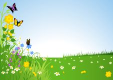 Луг весны бесплатная иллюстрация