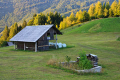 Луг в Словении Стоковое фото RF