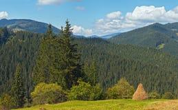 Луг горы лета Стоковая Фотография
