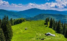 Луг горы Стоковое фото RF