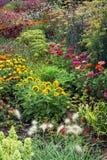 Луг лета вполне цветков Стоковая Фотография