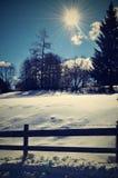 Луг зимы Стоковая Фотография RF