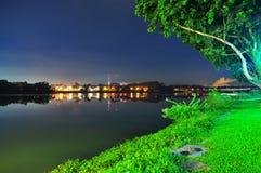 Луг и дерево более низким резервуаром Seletar Стоковые Изображения RF