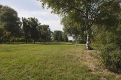 Луг и деревья Стоковая Фотография RF