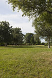 Луг и деревья Стоковые Изображения