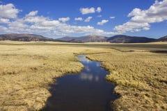 Луг и поток кальдеры Valles Стоковые Фотографии RF
