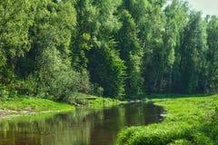 Луг на речном береге Стоковое Изображение