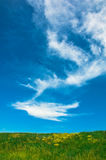Луг, небо и облака Стоковые Изображения