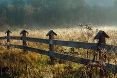 Луг осени утра оградите солнцецветы лета лужка деревянные Countrysied стоковые изображения