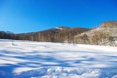 Луг покрытый с снегом в горах в зиме Стоковая Фотография