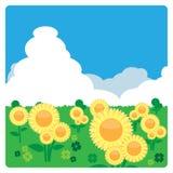 Луг солнцецвета в солнечном дне Стоковая Фотография