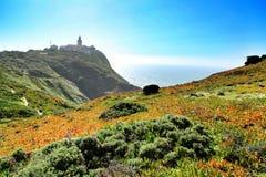 Луг Carpobrotus Edulis окружая маяк Cabo da Roca в Португалии стоковое изображение
