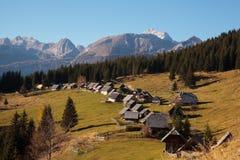 Луг Zajamniki высокогорный в Словении Стоковая Фотография RF