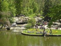 Лужайка в парке Стоковые Изображения RF