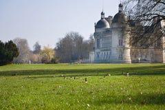 Лужайка замока Chantilly с gooses на ей Стоковая Фотография