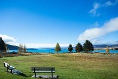 Лужайка на береге озера озера Tekapo Стоковые Фото